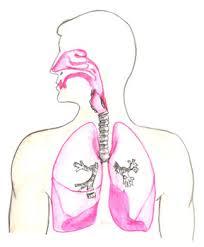 Chronic respiratory failure
